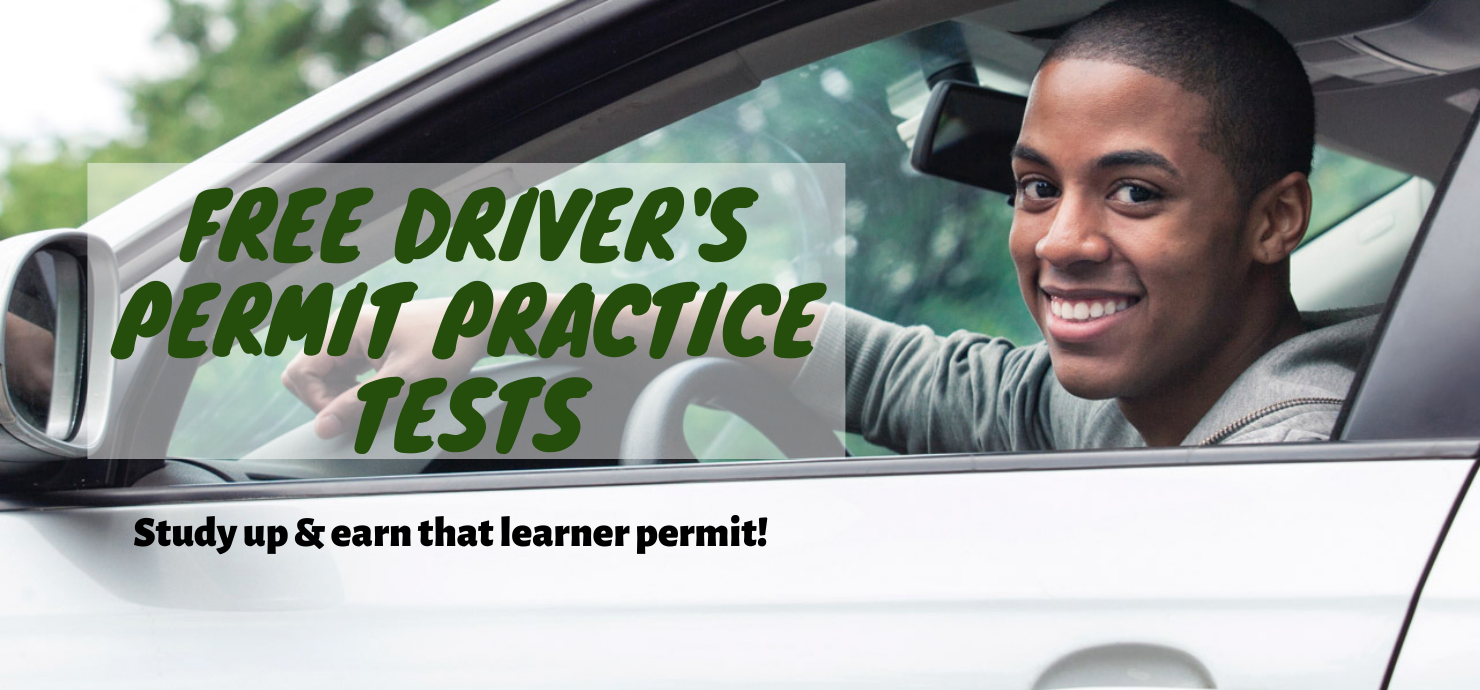 "Slide reading ""driver's permit practice tests"""